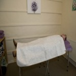 SCENAR healing blanket